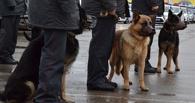 В Токарёвке нашли тело девушки с признаками насильственной смерти