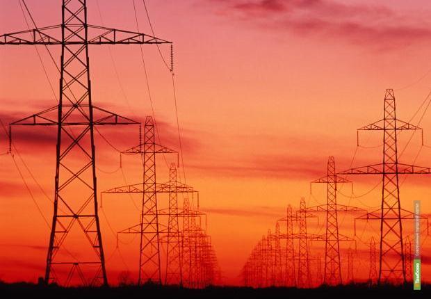 Тамбовские энергетики эффективно реализуют программу по расчистке воздушных трасс