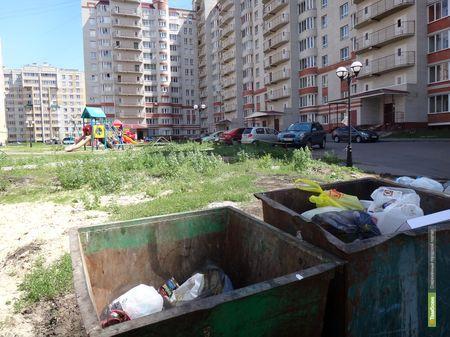 Тамбовчане требуют от губернатора навести идеальную чистоту в их дворе