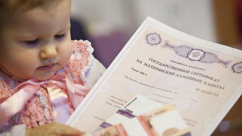Тамбовские родители стали чаще использовать маткапитал на образование детей