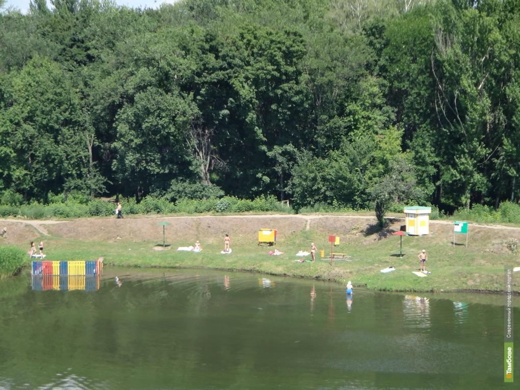 На Тамбовщине расчистят реку Ира