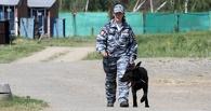 Полицию заставят разыскивать детей через три часа после их исчезновения