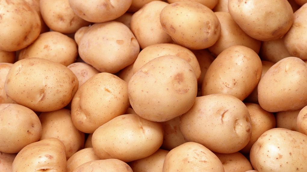Тамбовская картошка вошла в топ-100 национальных туристических брендов России