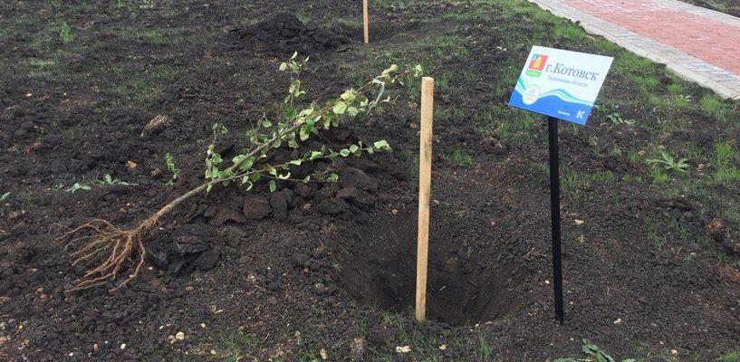 Алексей Плахотников хочет посетить парк в Башкортостане, где посадили яблоню в честь Котовска