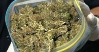 80 граммов марихуаны изъяли у жителя села Большая Липовица