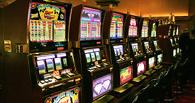 Из подпольного казино в Тамбове изъяли технику и нелегальную выручку