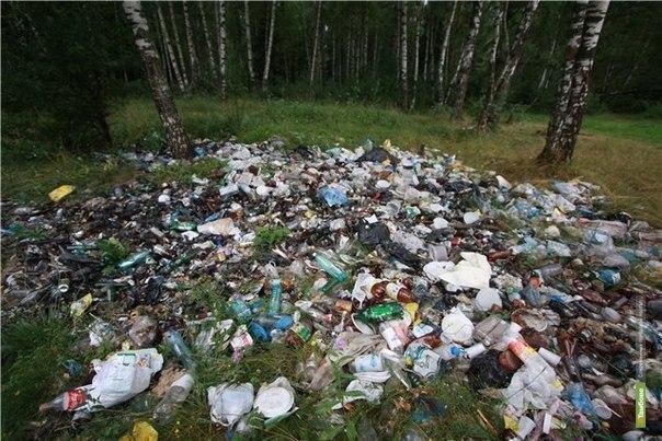 В Тамбовской области составят «Народную карту несанкционированных свалок»