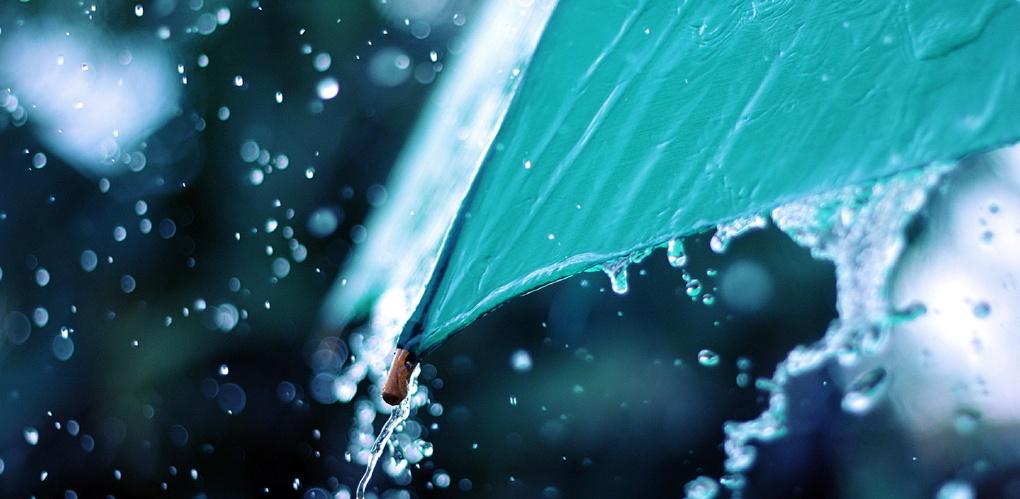 Тамбовчан ожидают дожди