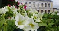 На клумбах Тамбова высадили более 3 миллионов цветов