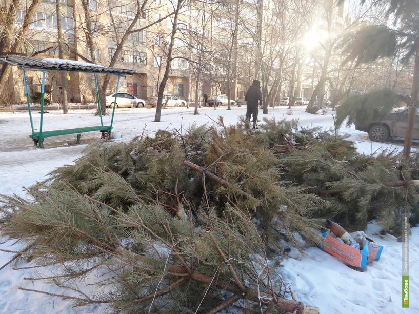 Тамбовские дворы до сих пор «украшают» новогодние елки