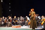 Гости из Санкт-Петербурга окунули тамбовчан в мир оперы
