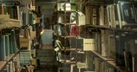 Книги тамбовских библиотек теперь можно найти в интернете