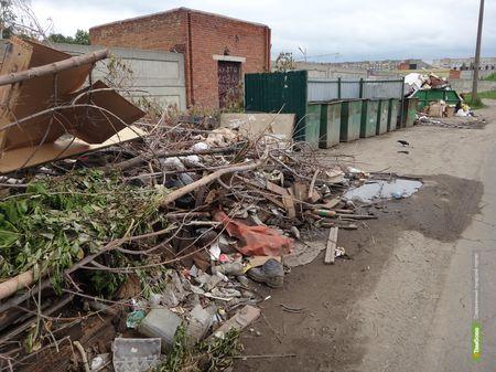Город избавляется от мусора: результаты проделанной работы