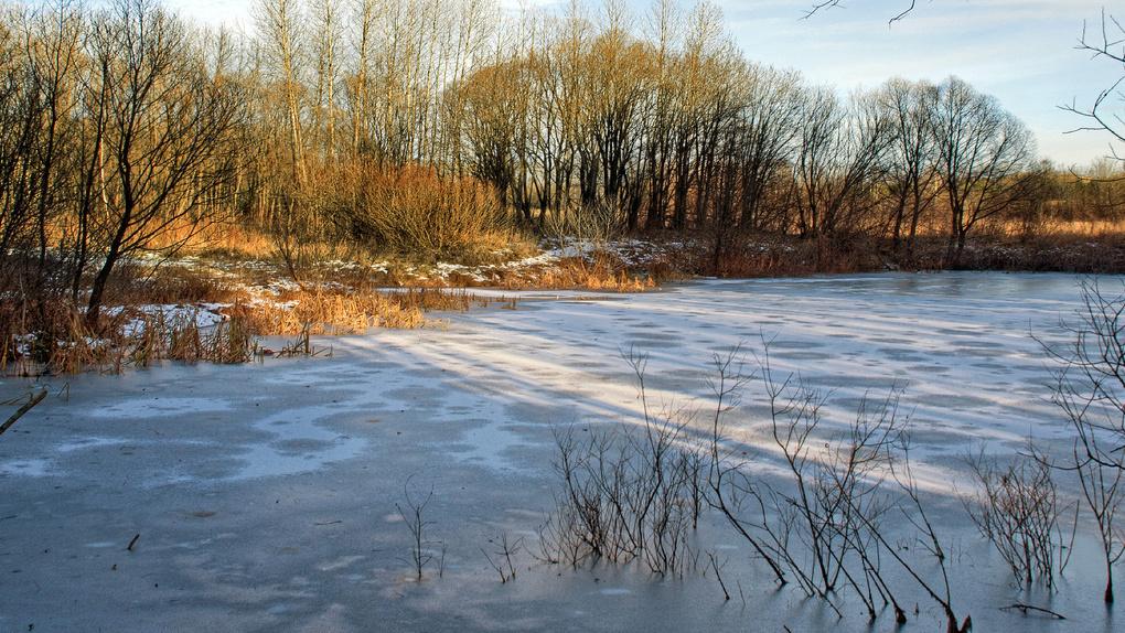 Причинами происшествий на льду в Тамбовской области считаются неопытность рыбаков и алкоголь