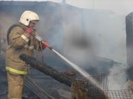 В Тамбове сгорел дачный домик
