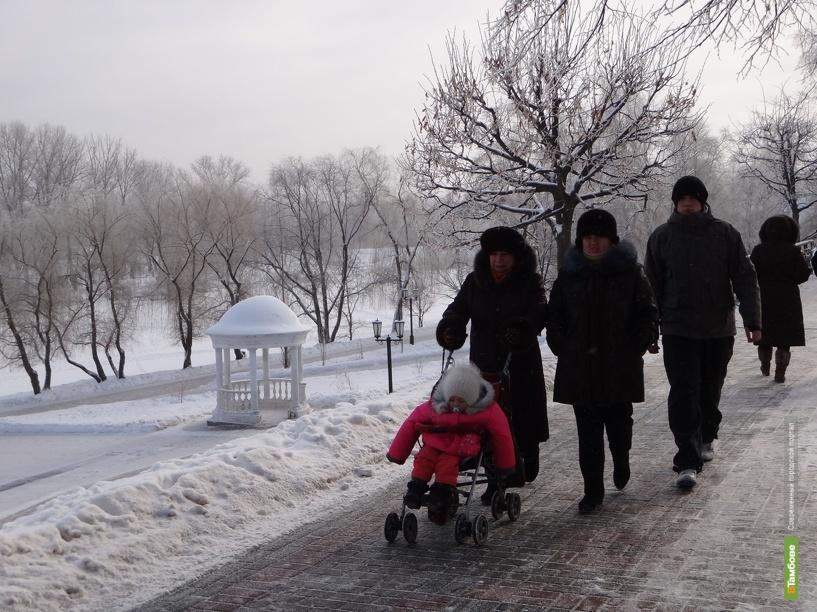 На смену ветрам в Тамбов придут 30-градусные морозы
