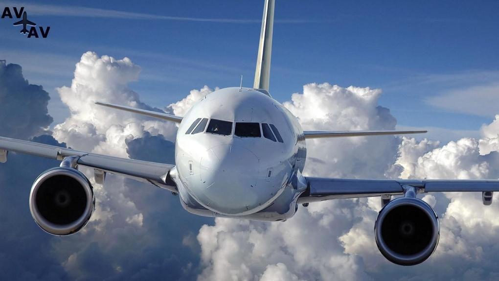 Летом из Тамбова планируют снова запустить авиарейсы в Сочи и Симферополь