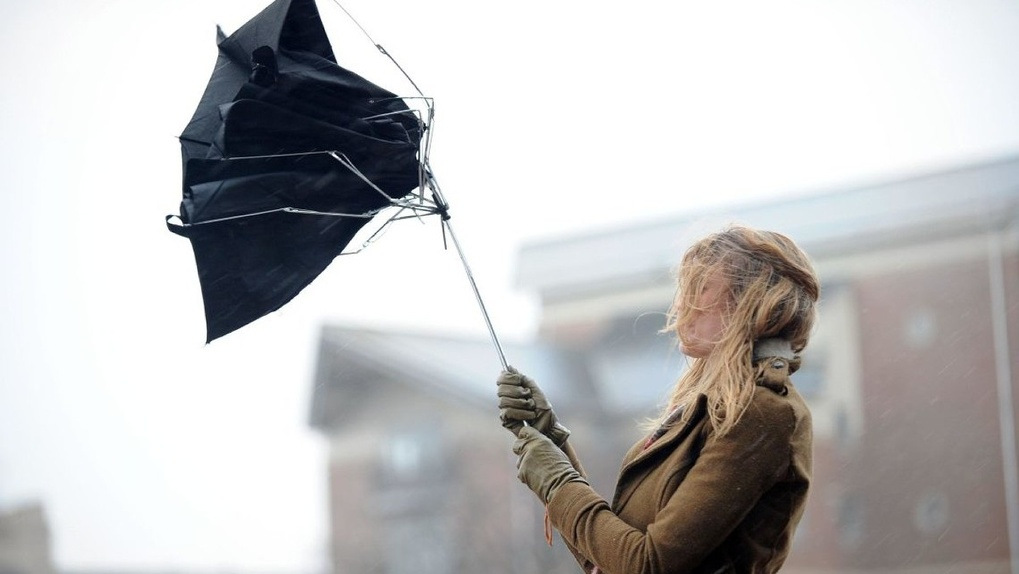 Осторожно, сильный ветер! Экстренное предупреждение для жителей Тамбовщины