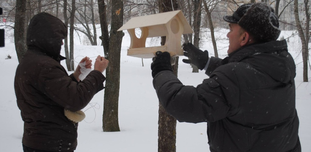 В парке «Дружба» появились домики для птиц