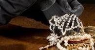 В Тамбове бизнесмена осудили за инсценировку ограбления собственного магазина