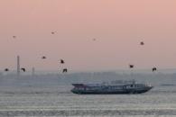 В Охотском море пропал теплоход с одиннадцатью членами экипажа