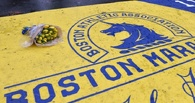 В годовщину бостонского теракта людей снова эвакуировали из-за угрозы взрыва