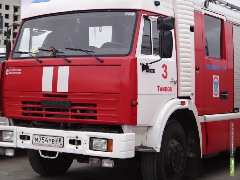 В Тамбовской области в огне погибли два человека
