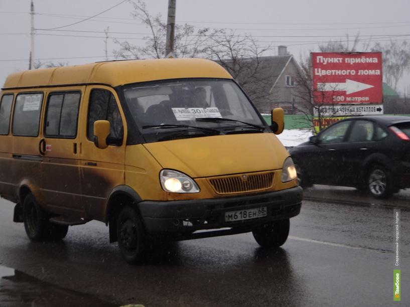 Количество пассажирских ГАЗелей в Тамбове сократилось