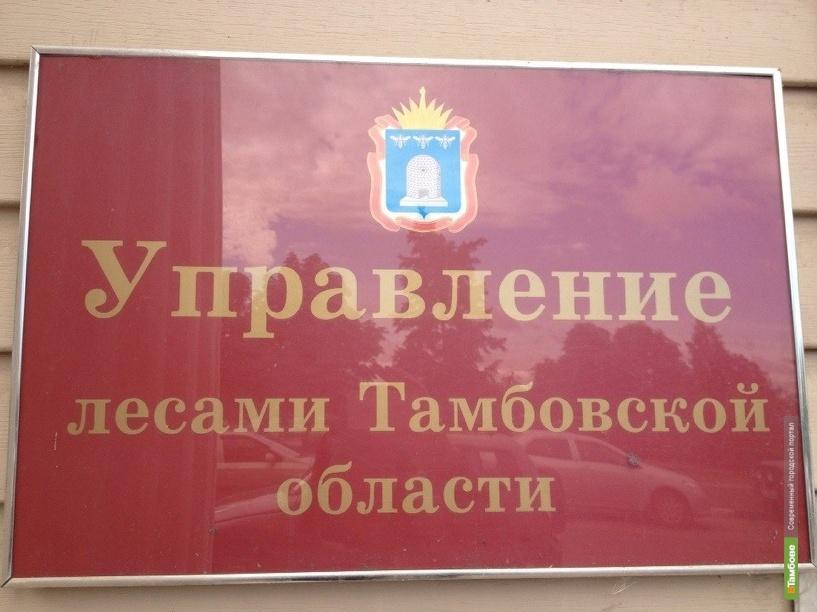 Доходы лесхозов Тамбовской области существенно выросли