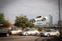 Из жизни животных: смотрим «Жажду скорости / Need For Speed»