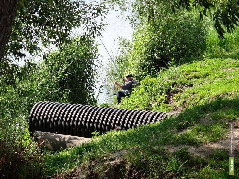 Тамбовские рыбаки ловят карасей прямо у канализационной трубы