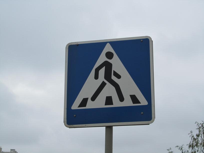 Тамбовские автоинспекторы выйдут на «пешеходный» рейд