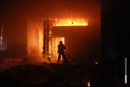 Житель Тамбовщины спалил собственный дом