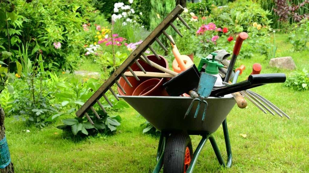 Огород сажать и себе не вредить? Врачи рассказали, как сохранить здоровье на даче