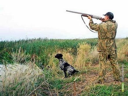 На Тамбовщине весенний сезон охоты начнётся в апреле
