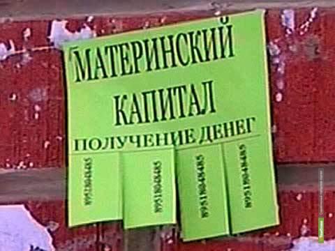 Тамбовчане, владеющие сертификатом на материнский капитал, могут стать жертвой мошенников