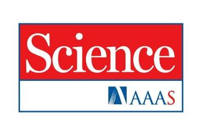 Техуниверситет получил бесплатный доступ к известному во всём мире научному изданию