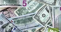 Закон об амнистии капиталов будет готов уже летом следующего года