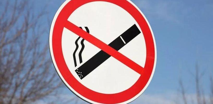 В 2017 году 8 тамбовчан попались на курении в общественных местах