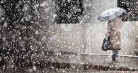 В Тамбовскую область вернулся снег и сильный ветер
