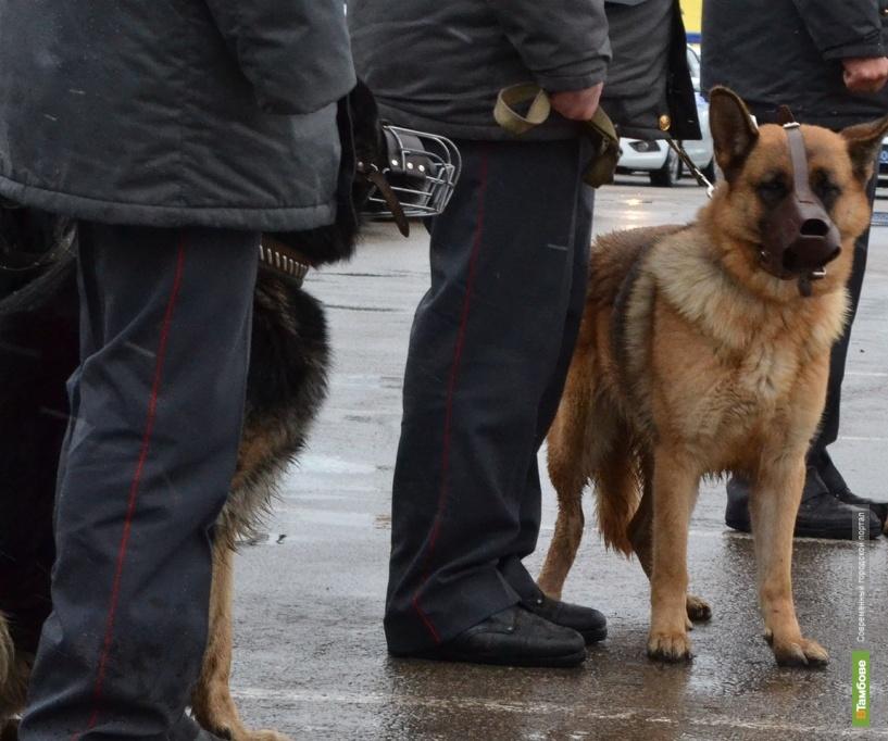 Полицейские разыскали тамбовчанина, совершившего серию краж