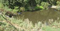 В Тамбовском районе иномарка «улетела» в озеро