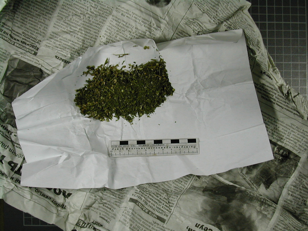 Выявили марихуану что делать при марихуане