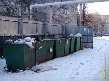 Сити-менеджер Тамбова отчитал коммунальщиков за мусор