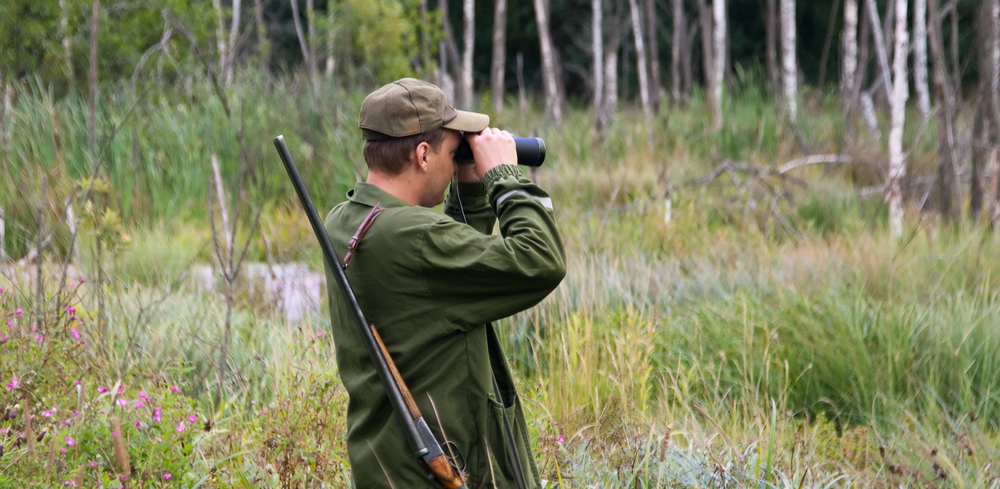 В регионе открывается летне-осенний сезон охоты на пернатую дичь