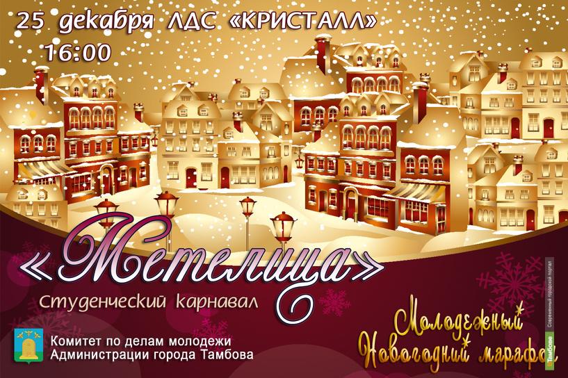 Тамбовская молодежь отметит Новый год в ледовом царстве
