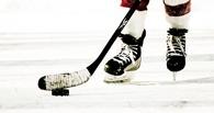 Тамбовские хоккеисты на третьем месте «турнирки»