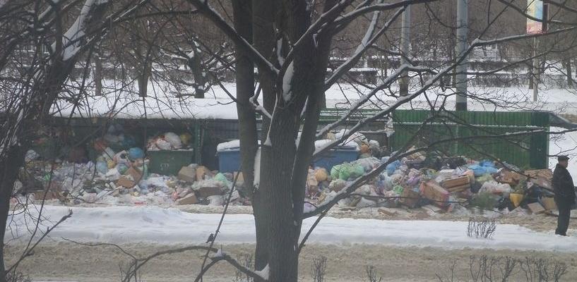 Рабочих заставляют фотографировать чистые мусорные баки