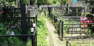 В Пичаевском районе нашли мёртвого пожилого мужчину на могиле родителей
