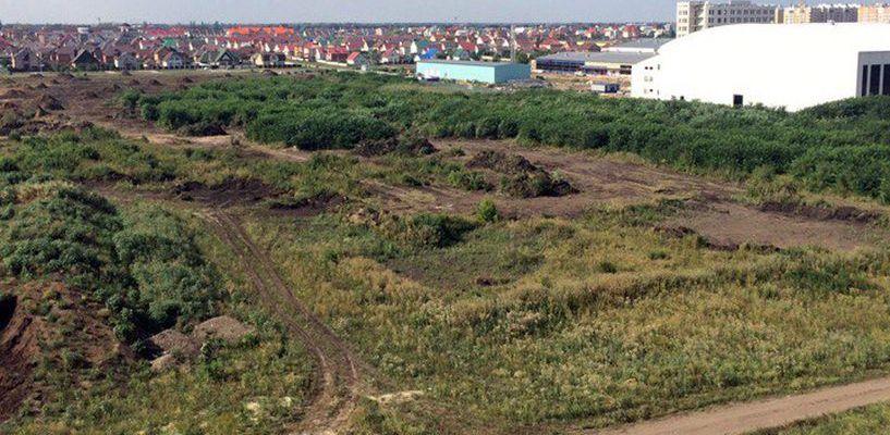 Петиция в помощь: жители Тамбова переживают за судьбу Олимпийского парка